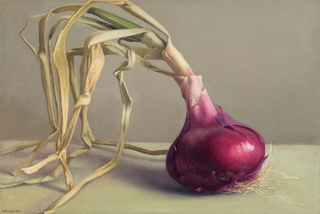Red Onion, 2012. Oil on linen, 8 x 12 inches.