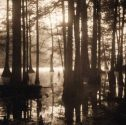 Cypress Grove, Louisiana