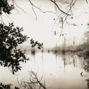 Mirrored Lake, Louisiana