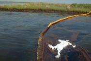 Hazmat Suit Floating in Oil