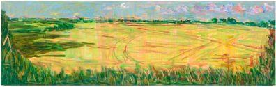 Early Field