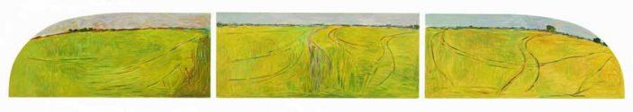 Rice Tracks: Triple View