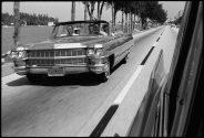 Untitled, Miami, Florida, 1966 (GPAR 0028)