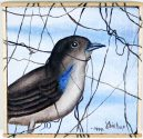 Terra #104: Plain Colored Tanager