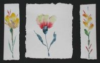 Flower Triptych (10067)