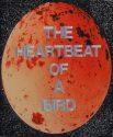 The Heartbeat of a Bird