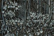 Wildflowers (15956)